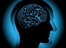 neuropsychology-relationships